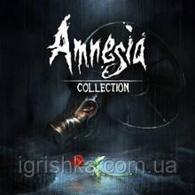 Amnesia: Collection Ps4 (Цифровой аккаунт для PlayStation 4) П3