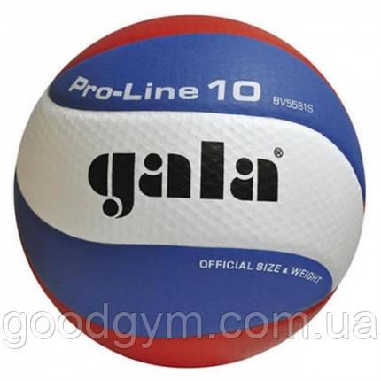 Мяч волейбольный Gala Pro-Line BV5581SA, фото 2
