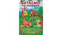 Пегас ВЧ Казка про жирафа та метелика (Укр)