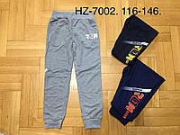 Спортивные штаны для мальчиков оптом, Active Sport, 116-146 см,  № HZ-7002
