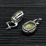 Змеевик (серпентин), серебро 925, серьги, 323СРЗ, фото 3