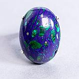Малахит в лазурите, 25*18 мм., серебро 925, кольцо, 932КЛМ, фото 2