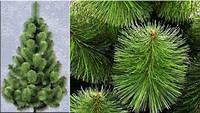 Сосна елка искуственная 0.7м (Микс)