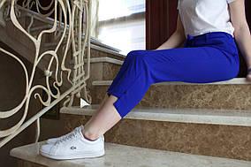 LEX №73 Яскраві укорочені брюки поясом на резинці 44-56 сині/ синього кольору/ синій/ електрик