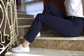 LEX №18 Ділові жіночі штани в клітку на літо 44-58 сині/ синього кольору/ синій