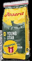 Josera Young Star 15 кг - беззерновой корм для щенков средних и крупных пород от 8 недель, фото 1