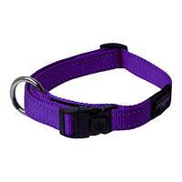 Нейлоновый ошейник для собак,  фиолетовый Rogz Utility L: 34-56 см x 20 мм, фото 1