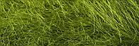 Сизаль 20г оливковый