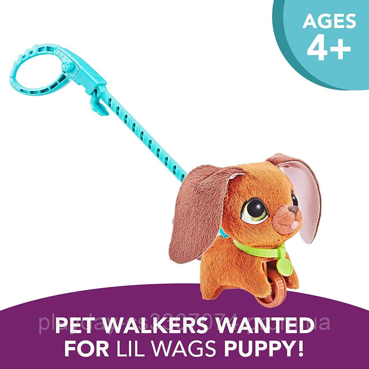 Интерактивная игрушка Собачка на поводке Furreal Friends Walkalots Husbro