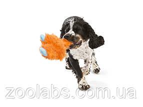Игрушка для собак с пищалкой Линкольн, фото 2