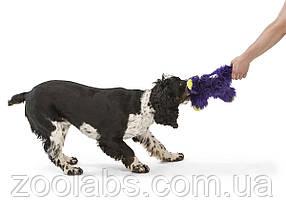 Игрушка для собак с пищалкой Линкольн, фото 3