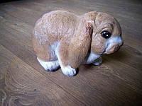 Кролик Рыжий
