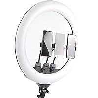 Кольцевая LED лампа с пультом ДУ и 3 держателями для телефона SLP-G63 (55 см)