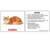 Комплект карток Свійські тварини з фактами