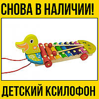 Деревянная игра Ксилофон | Утка музыкальный детский деревянный инструмент для детей цена