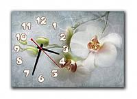 Часы настенные 30х45см Z 261