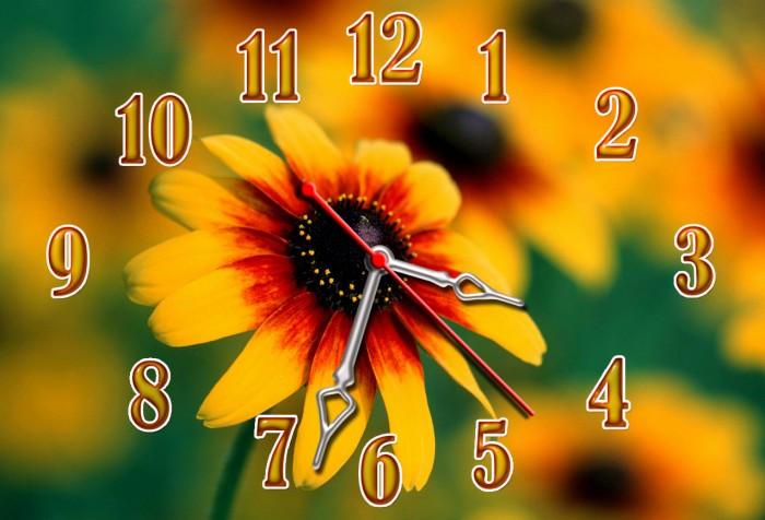 Часы настенные 30х45см Z 228