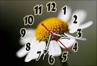 Часы настенные 30х45см Z 224