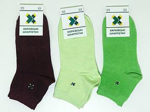 Женские носки Харкiвськi Шкарпетки Бордово-зеленый