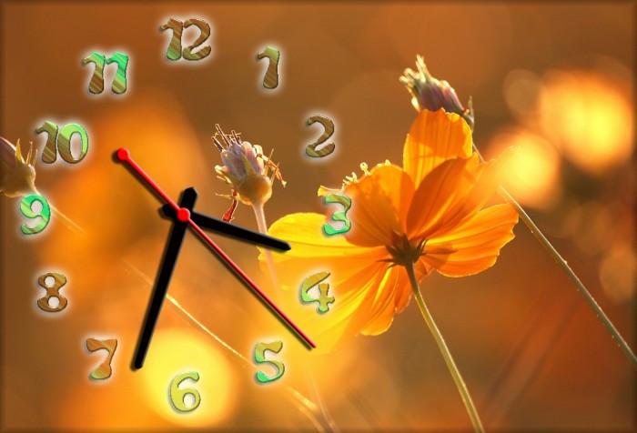 Часы настенные 30х45см Z 211