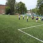 Искусственная трава для футбола Limonta TangoTurf FI 60, фото 2