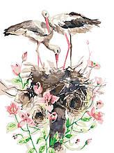 Картина по номерам Семья аистов (цветной холст) 40*50см Раскраска по цифрам