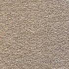 Ковролин Associated Weavers Sirius, фото 3