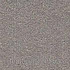 Ковролин Associated Weavers Sirius, фото 10