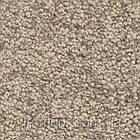 Ковролин Associated Weavers Solstice, фото 6