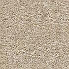 Ковролин Associated Weavers Andromeda, фото 2