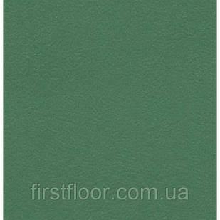 Линолеум Graboflex Start (4000-660-3)