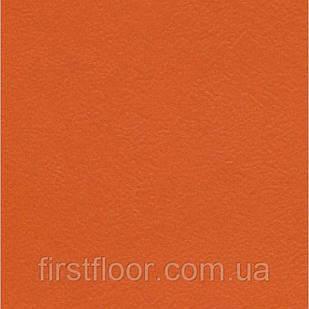 Линолеум Graboflex Start (4000-665-3)
