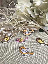"""Яркие деревянные пуговички для декора """"Стильные птички"""", 1.6х3 см., 5 шт в упаковке, 10 гр."""