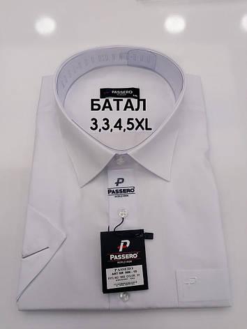 Рубашка батальная короткий рукав PASSERO, фото 2