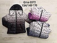 Куртка для девочек оптом, Glo-story, 134/140-170 см, № GMA-3372