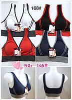 Топ бра, хлопок трикотаж, цветные женские футболки 46-52 (168)
