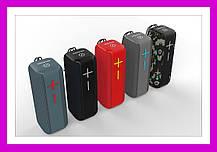 Аудио колонка Bluetooth HOPESTAR P15