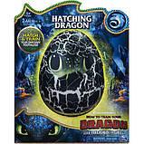 Dragons как приручить дракона 3 интерактивный дракон беззубик в яйце toothless baby dragon, фото 5