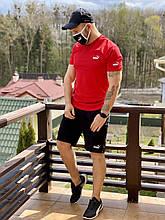Красный мужской спортивный костюм Пума реплика. Мужская футболка шорты Puma. Летний спортивный комплект набор