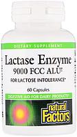 Ензим Лактазы Natural Factors Lactase Enzyme 9000 FCC ALU 60 Капсул