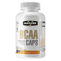 Амінокислоти BCAA Maxler BCAA Caps 2:1:1 (240 кап) (108925) Фірмовий товар!