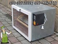 Инкубатор Господар- 80 яиц, с автоматическим переворотом и автоматическим поддержанием влажности на 80 яиц