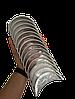 Вкладыш коренной на WD615 (81500010046 комплект)