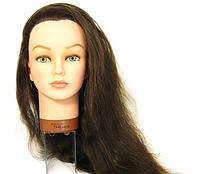 Голова учебная брюнетка (натуральные волосы, 45-60см) JENNY Sibel 0040501, фото 1