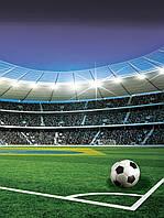 Фотообои флизелиновые 3D 206x275 см Футбол: Мяч на стадионе 1914VEA