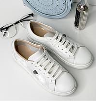 Кроссовки кожаные бронзовые кеды и белые кожаные на шнурках белая подошва размер 36-40, фото 3