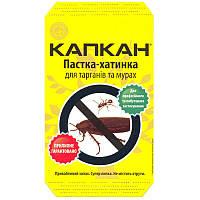 Клеевая ловушка-домик Капкан для тараканов