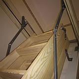 Дерев'яні сходи на горище Hot Step Long , Мансардна драбина 340cm, фото 2