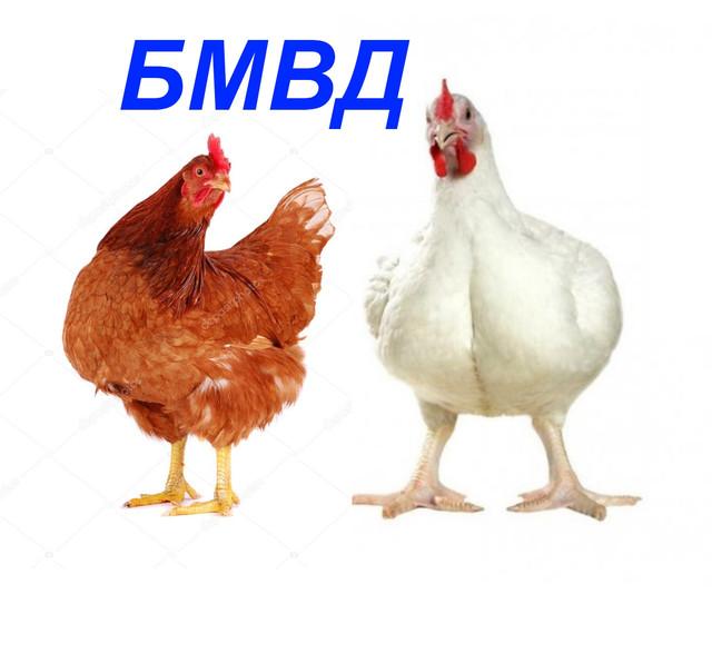 БМВД для птицы