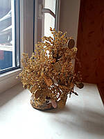 Оригинальный подарок из бисера  денежное дерево с центами.